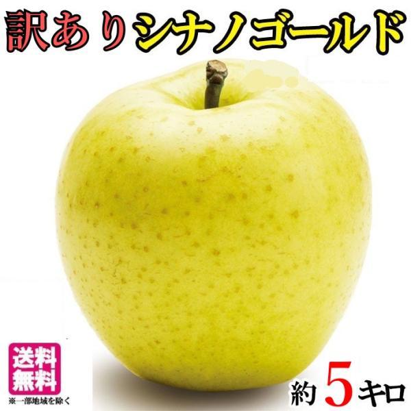 シナノゴールド りんご 訳あり 減農薬 長野県産  5キロ レビューを書いたら200円クーポン
