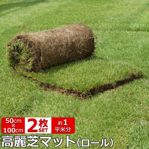 芝 ロール マット 芝生 高麗芝 ロール芝 約1平米 2ロール 芝生 マット 天然芝  ロール芝 夏芝 お庭