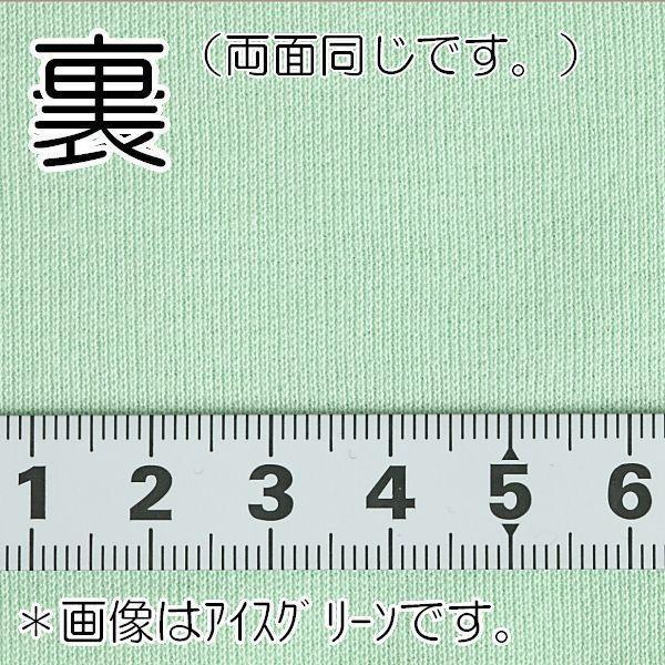 ニット生地 冷感 UV シャインクール40スムース インディゴブルー 「犬服、スポーツ、UVケア向け」|knit-yamanokko|03