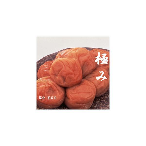 【送料無料】紀州・最高級南高梅(みなべ産)−うす塩・梅干し−「極み」500g(塩分 約5%)