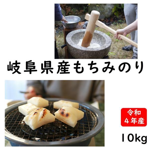 令和2年産 岐阜県産もち米(モチミノリ)  10kg 白米