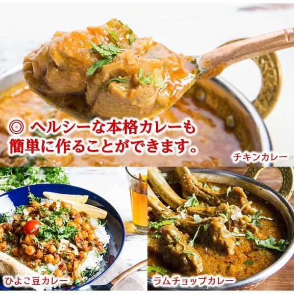 カレー粉 5種類から選べるオリジナルマサラセット 100g×3袋 送料無料 神戸スパイス kobe-spice 05