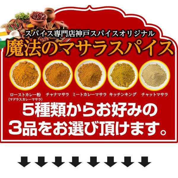カレー粉 5種類から選べるオリジナルマサラセット 100g×3袋 送料無料 神戸スパイス kobe-spice 07