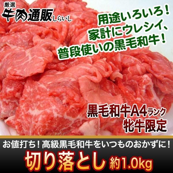 佐賀牛、宮崎牛 黒毛和牛の切り落とし 1kg[送料無料]