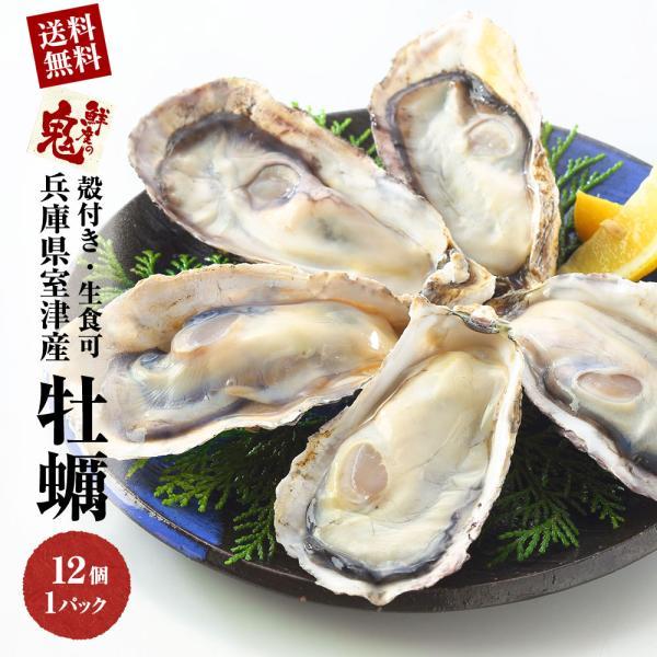 兵庫県産 生食 かき カキ 牡蠣 貝類 12個入り 刺身 さしみ 殻付き