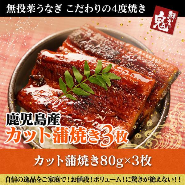 お中元 ギフト うなぎ 国産 ウナギ 鰻 カット 蒲焼き 3枚 セット 祝い ギフト プレゼント お取り寄せ グルメ