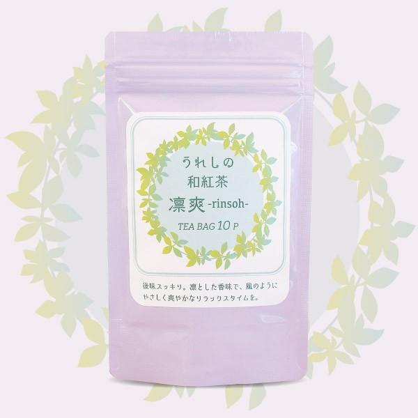 和紅茶 ティーバッグ 10包セット 佐賀 嬉野 国産紅茶 無農薬 rinsoh 凛爽 ベーシック|koccha-waccha