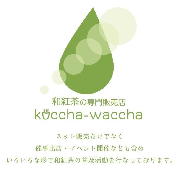和紅茶 ティーバッグ 10包セット 佐賀 嬉野 国産紅茶 無農薬 rinsoh 凛爽 ベーシック|koccha-waccha|05