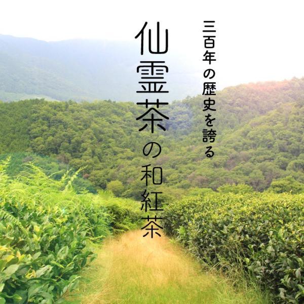 和紅茶 ティーバッグ 5包セット 仙霊茶 国産紅茶 無農薬 shinmiya シンミヤ 神河町|koccha-waccha|02