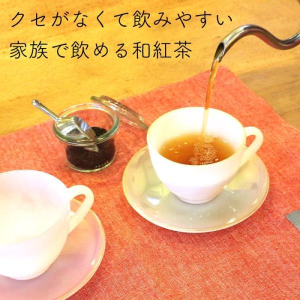和紅茶 ティーバッグ 5包セット 仙霊茶 国産紅茶 無農薬 shinmiya シンミヤ 神河町|koccha-waccha|03