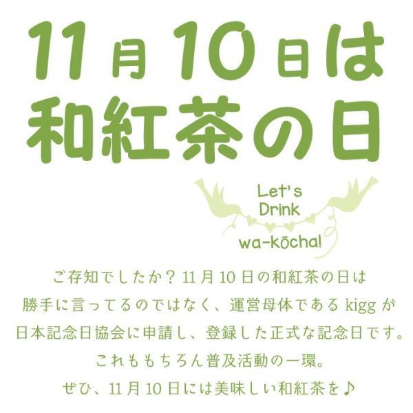 和紅茶 ティーバッグ 5包セット 仙霊茶 国産紅茶 無農薬 shinmiya シンミヤ 神河町|koccha-waccha|08