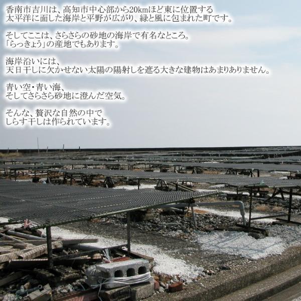 釜揚げしらす天日干し 500g|kochi-bussan|02