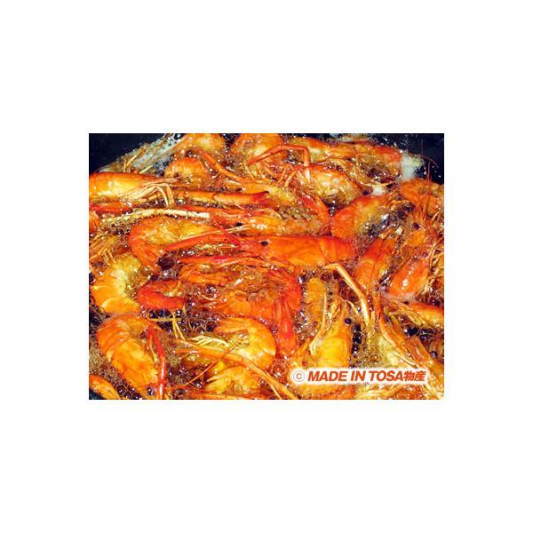 天然手長えび 冷凍 500g|kochi-bussan|04