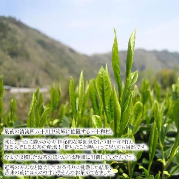 特上煎茶|kochi-bussan|02