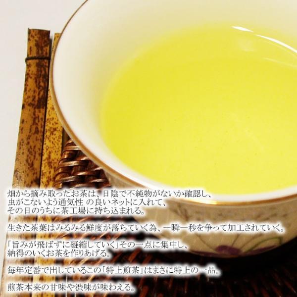 特上煎茶|kochi-bussan|04