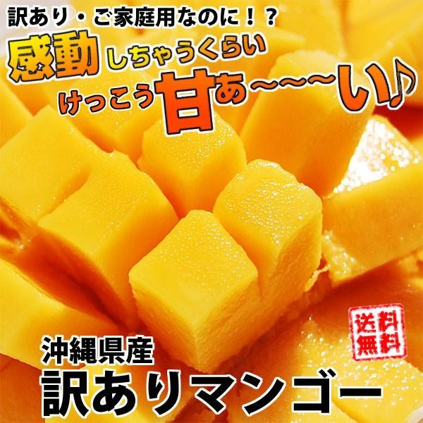 沖縄県産訳ありマンゴー1kg箱3個〜5個 送料無料 ご家庭用 ギフト対応不可 ワケあり わけあり