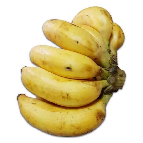 沖縄県やんばる産島バナナ 1kg超 送料無料