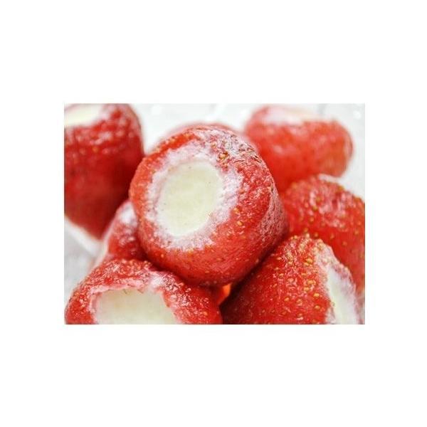 練乳いちごアイス(20粒) まるごと 苺 アイス イチゴ デザート 贈答 ギフト 敬老の日(送料無料)