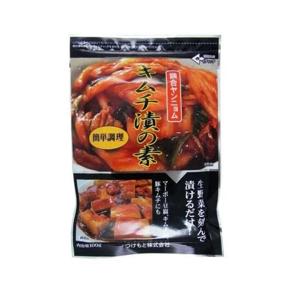 キムチ漬の素 100g×10個 (送料無料)