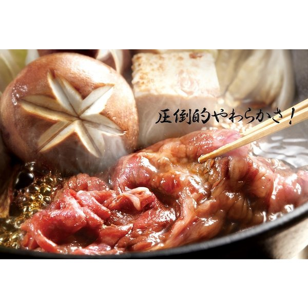 すき焼き 牛肉 肉 ギフト 焼き肉 焼肉 赤身 すき焼き用牛肉 高級 国産牛肉 トロ赤身すき焼き 500g (3~4人前)|kofukutei|06