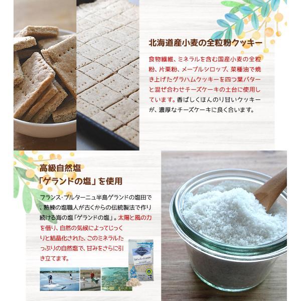 チーズケーキ スイーツ ハニーレモンレアチーズケーキ 6個入りBOX |kogachee|05