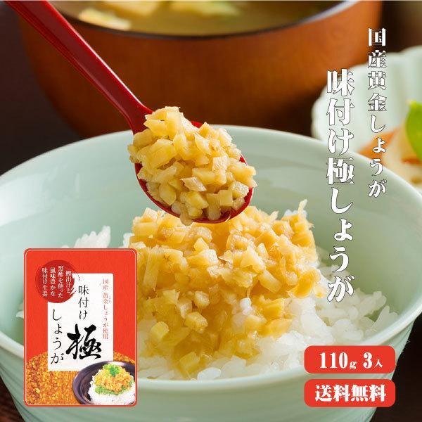 しょうが万能調味料 味付け極しょうが 110g×3 ゆうパケット送料無料 国産 酢しょうが ショウガ おかず生姜 ふりかけ ご飯の友 坂田信夫商店