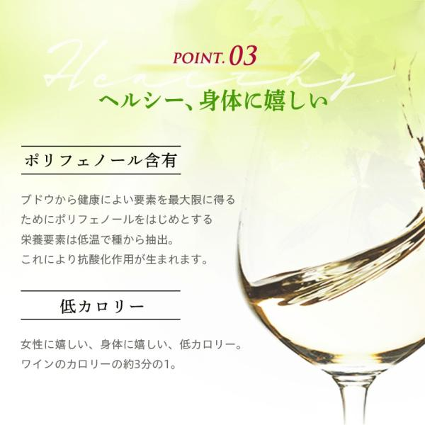 OPIA オピア・シャルドネ スパークリング ノンアルコールワイン 750ml|kohabaru|10