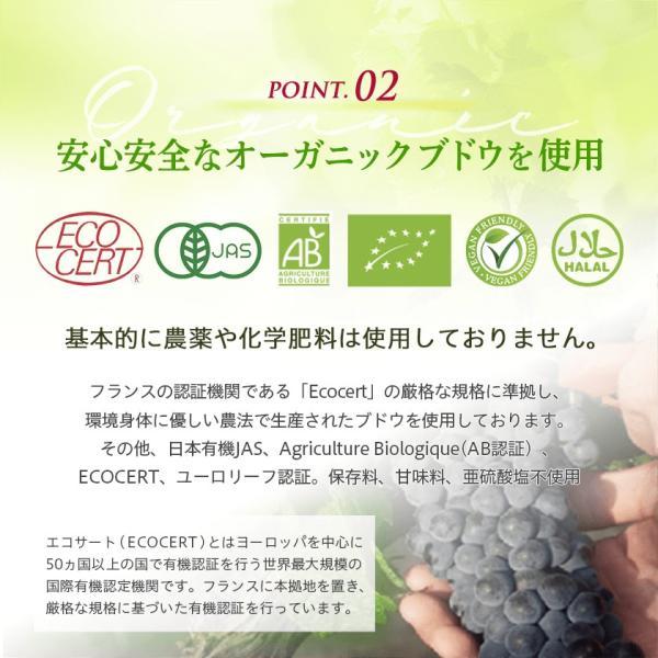 OPIA オピア・シャルドネ ノンアルコールワイン 750ml|kohabaru|09