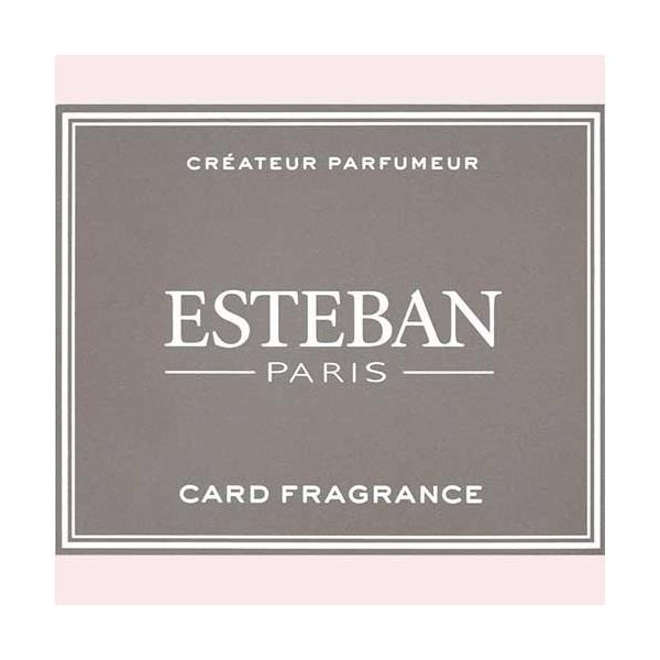 ESTEBAN (エステバン) 「カードフレグランス サンタル」|kohgallery|02