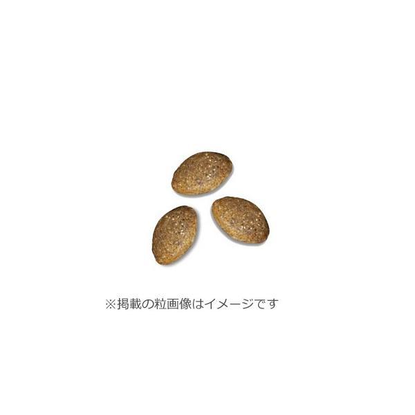 15日0時〜♪店内ポイント最大26倍! ニュートロ シュプレモ ドッグフード 小型犬用 成犬用 6kg(無添加)|koji|02