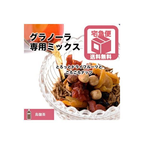 グラノーラ 専用 ドライフルーツ & ナッツ ミックス 烏龍茶タイプ 1kg 送料無料 シリアル に混ぜて美容成分たっぷり グラノーラに