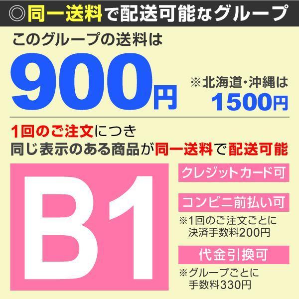 有用植物苗 シホウチク 2株 / 四方竹 筍 たけのこ タケノコ 国華園 kokkaen 02