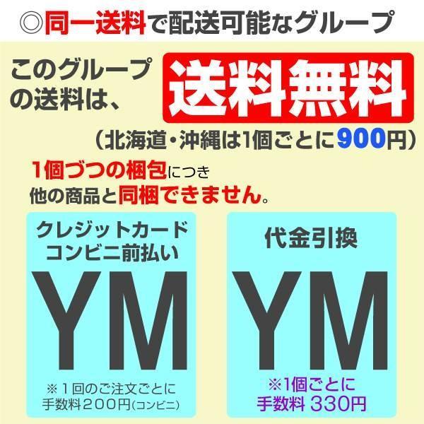 ポットアマリリス TOP3セット 3種3箱 / あまりりす 送料無料 国華園|kokkaen|04