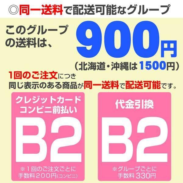 多肉植物 苗 セダム 虹の玉 2株 / たにく インテリアプランツ 国華園|kokkaen|04