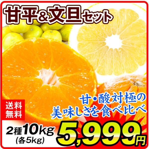 柑橘 甘平&文旦セット 2種10kg(各5kg)1組 ご家庭用 送料無料 食品