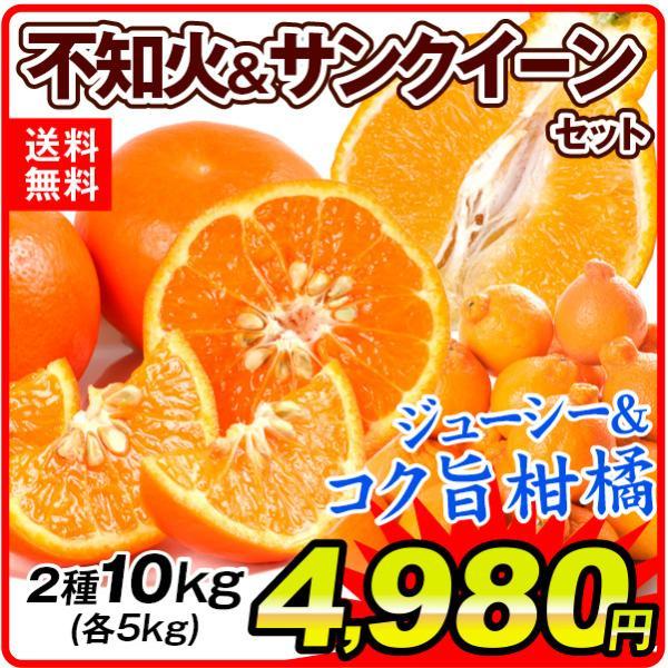 南国育ち特濃柑橘セット【不知火&サンクイーン】 2種10kg(各5kg)1組 ご家庭用 送料無料 食品