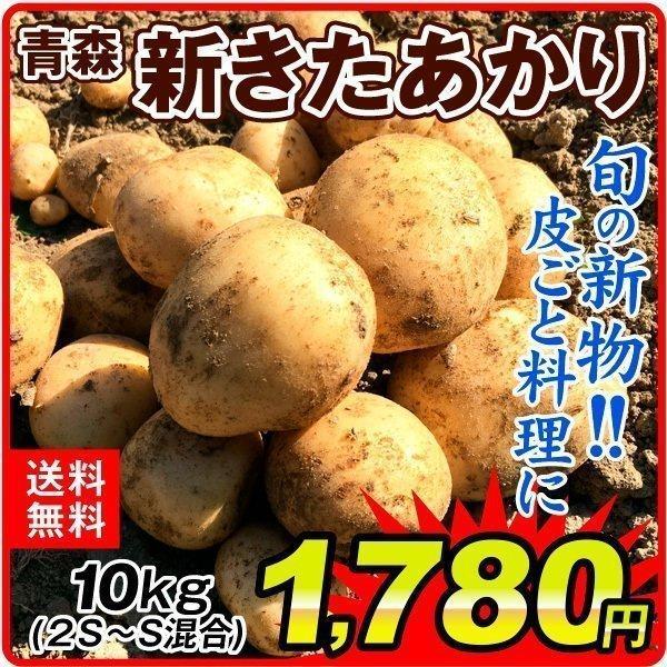 じゃがいも 青森産 新きたあかり(10kg)2S〜S混合 新じゃがいも ご家庭用 ばれいしょ 馬鈴薯 野菜 国華園