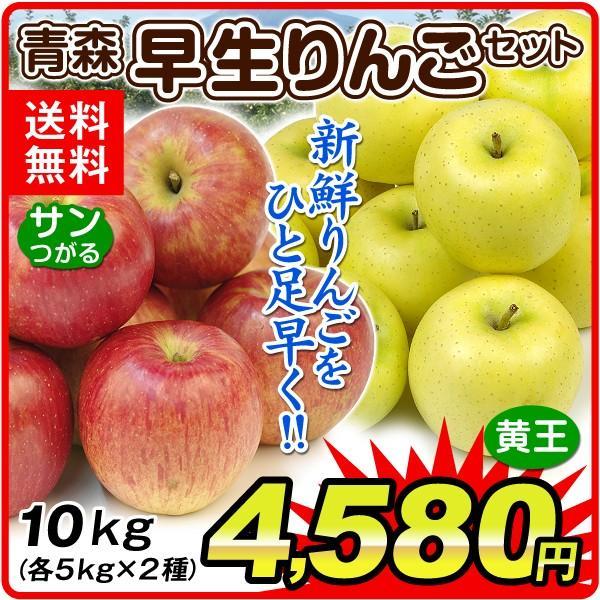 早生りんごセット10kg