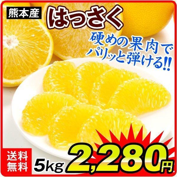 柑橘 熊本産 ご家庭用 はっさく 5kg 送料無料 食品