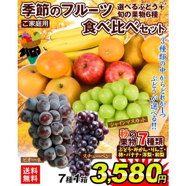 季節のフルーツ食べ比べセット  7種類 1箱 ご家庭用 旬の詰め合わせ フルーツ くだもの 食品 国華園|kokkaen|02