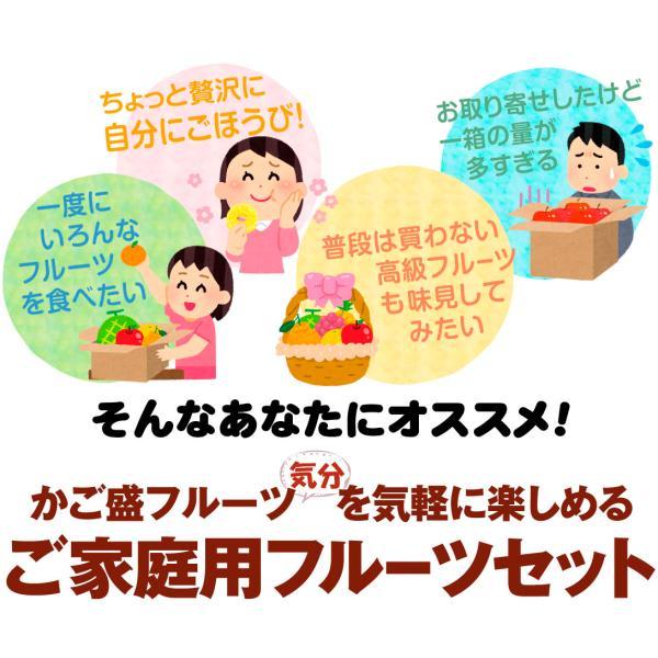 季節のフルーツ食べ比べセット  7種類 1箱 ご家庭用 旬の詰め合わせ フルーツ くだもの 食品 国華園|kokkaen|03