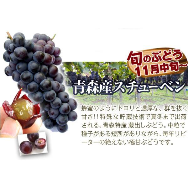 季節のフルーツ食べ比べセット  7種類 1箱 ご家庭用 旬の詰め合わせ フルーツ くだもの 食品 国華園|kokkaen|06
