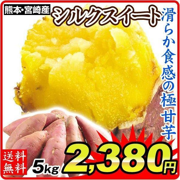 さつまいも 熊本・宮崎産 シルクスイート 5kg  訳あり ご家庭用 甘藷 サツマイモ 野菜 数量限定 国華園