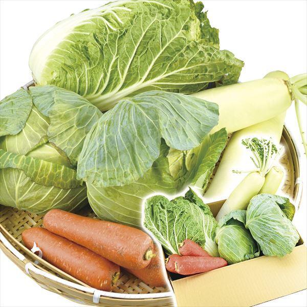 国産 重量野菜セット 4種1箱 白菜 大根 キャベツ にんじん 野菜詰め合わせ 自宅へお届け 国華園