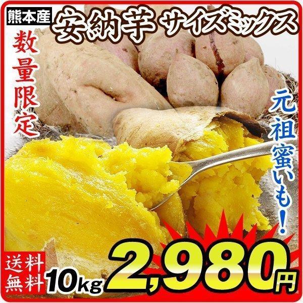 さつまいも 熊本産 サイズミックス 安納芋 10kg  訳あり ご家庭用 甘藷 サツマイモ 野菜 数量限定 国華園