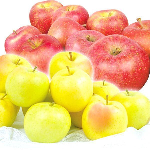 りんご 選べる欲張りりんご Bセット【とき・早生ふじ】 2種10kg(各5kg)1組 送料無料 食品