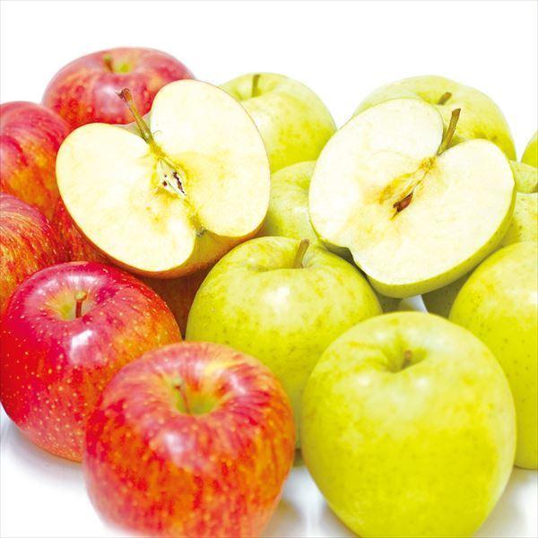 りんご 選べる欲張りりんご Eセット【サンふじ・王林】 2種10kg(各5kg)1組 送料無料 食品