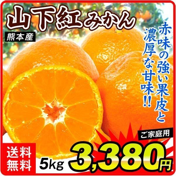 柑橘 熊本産 山下紅みかん 5kg ご家庭用 送料無料 食品