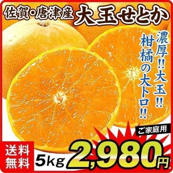 柑橘 佐賀唐津産 大玉せとか 5kg ご家庭用 送料無料 食品