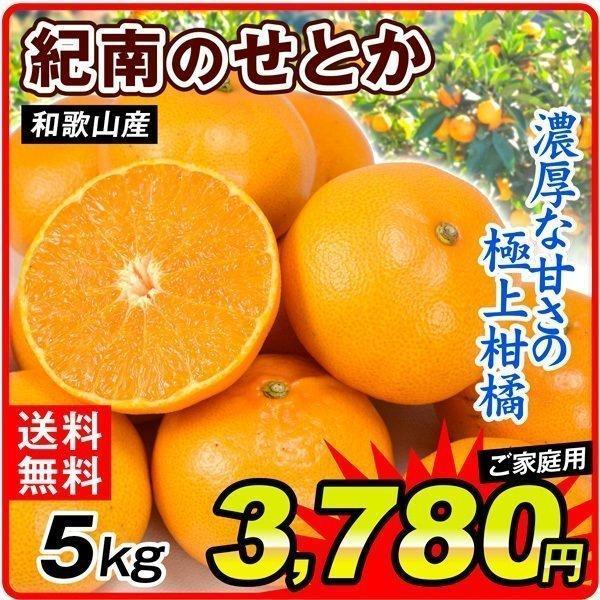 柑橘 和歌山産 紀南のせとか 5kg ご家庭用 送料無料 食品